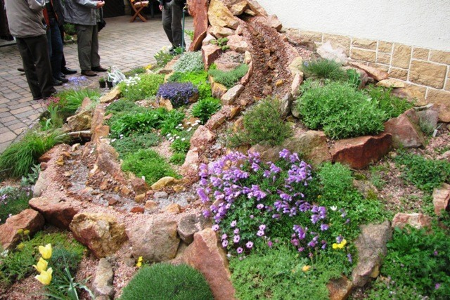 raritäten im steingarten - ausfahrt nach heuckewalde, Garten Ideen